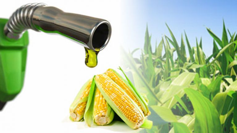 Estudio de INTA indica que la producción de bioetanol en Córdoba reduce 2,5 veces las emisiones de carbono