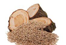 La biomasa es una alternativa ecológica para calefaccionar el hogar