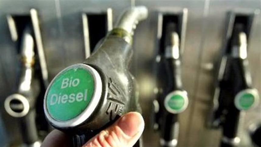 Bélgica prohíbe el biodiesel de palma y se desata una nueva guerra comercial entre Europa y el sudeste asiático
