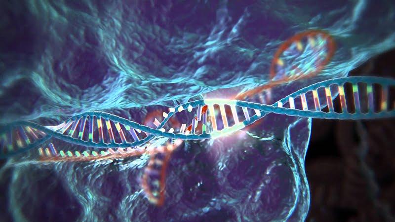 CRISPR es también una herramienta ambiental