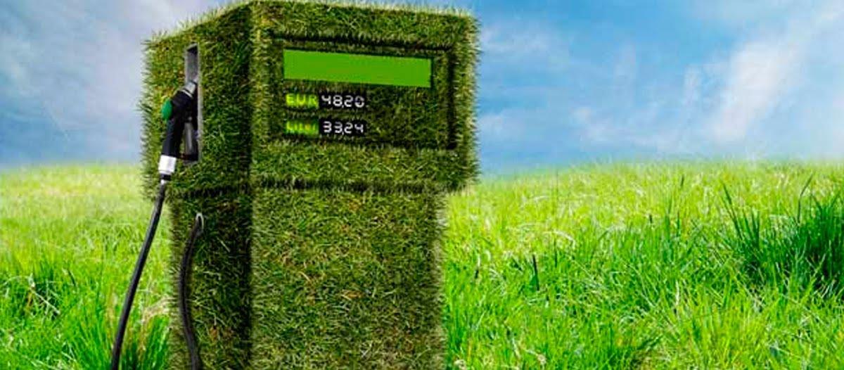 Los biocombustibles sacan chispas
