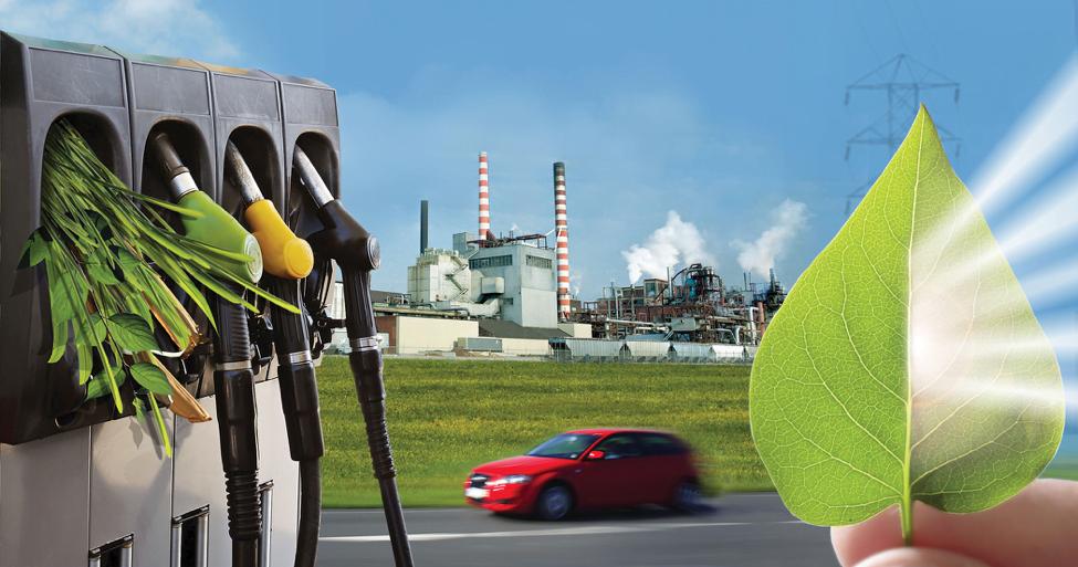 Los microosganismos y el CO2 quieren ser protagonistas de la bioeconomía