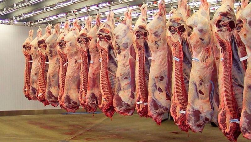 La Cámara Argentina de Feedlot manifiesta su total rechazo a cualquier medida que implique el cierre o limitaciones a las exportaciones de carne