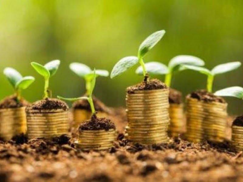 Brasil: Basf diseña un creativo mecanismo de canje de insumos agrícolas por créditos de descarbonización