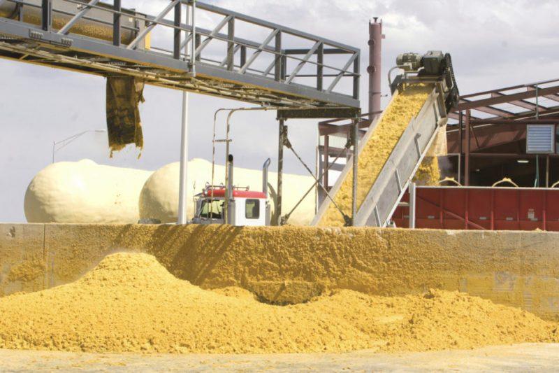 Fertilizantes fosforados, otro nuevo subproducto de la producción de bioetanol de maíz