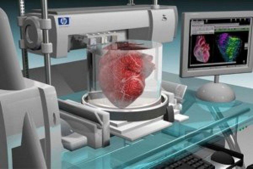 Se espera un boom de los bioplásticos para la impresión 3D