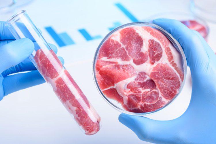 EEUU: reglamentación de etiqueteado podría demorar la llegada de la carne cultivada