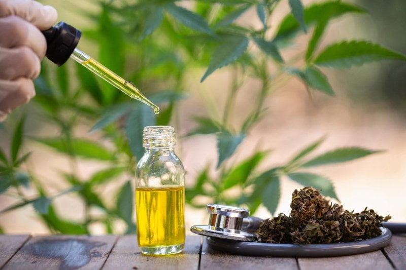 Tailandia aprueba el uso de aceite de cannabis y cáñamo