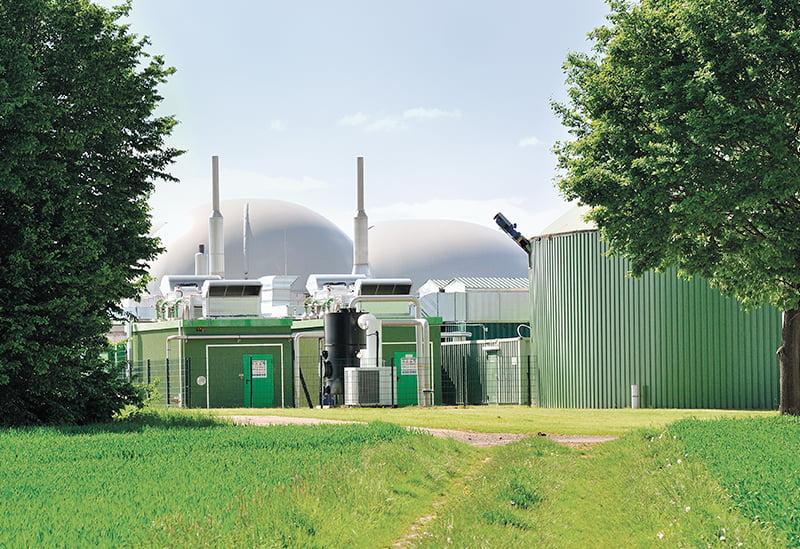 Reino Unido: La electricidad renovable superó por primera vez a los combustibles fósiles y hay críticas sobre el papel de la biomasa