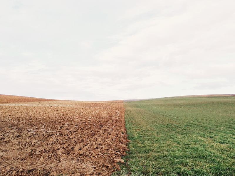 Ciencia, política y opinión pública buscan un terreno en común sobre el carbono del suelo y el cambio climático