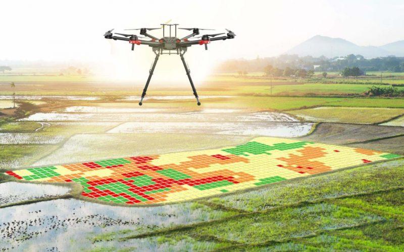 El Nobel Michael Kremer llama a digitalizar la agricultura en América Latina y el Caribe para enfrentar efectos de covid-19 y aliviar pobreza