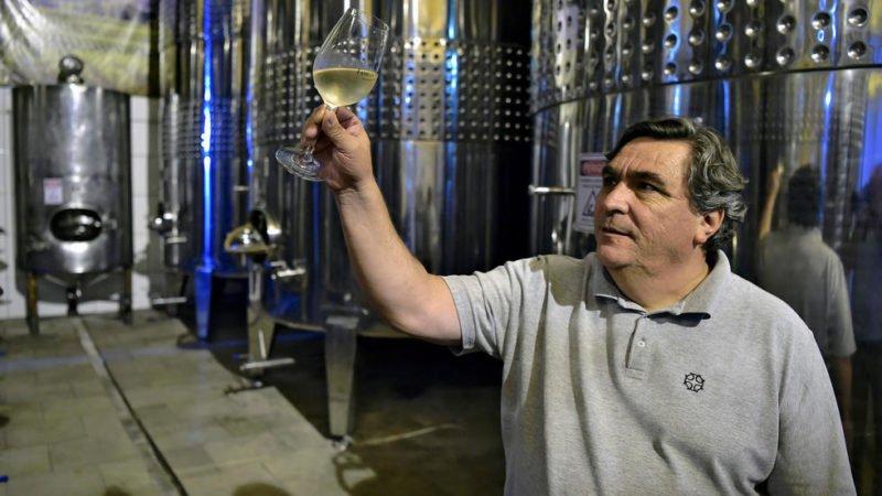 ¿Nace un nicho para vinos espumantes en Brasil?
