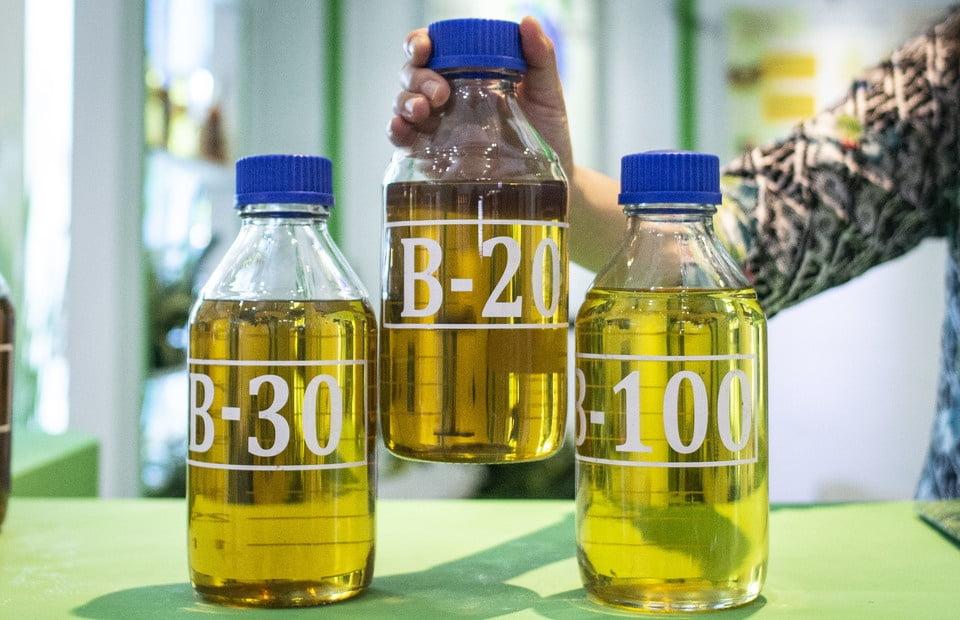 Con más biodiesel Indonesia puso fin a los bajos precios del aceite de palma