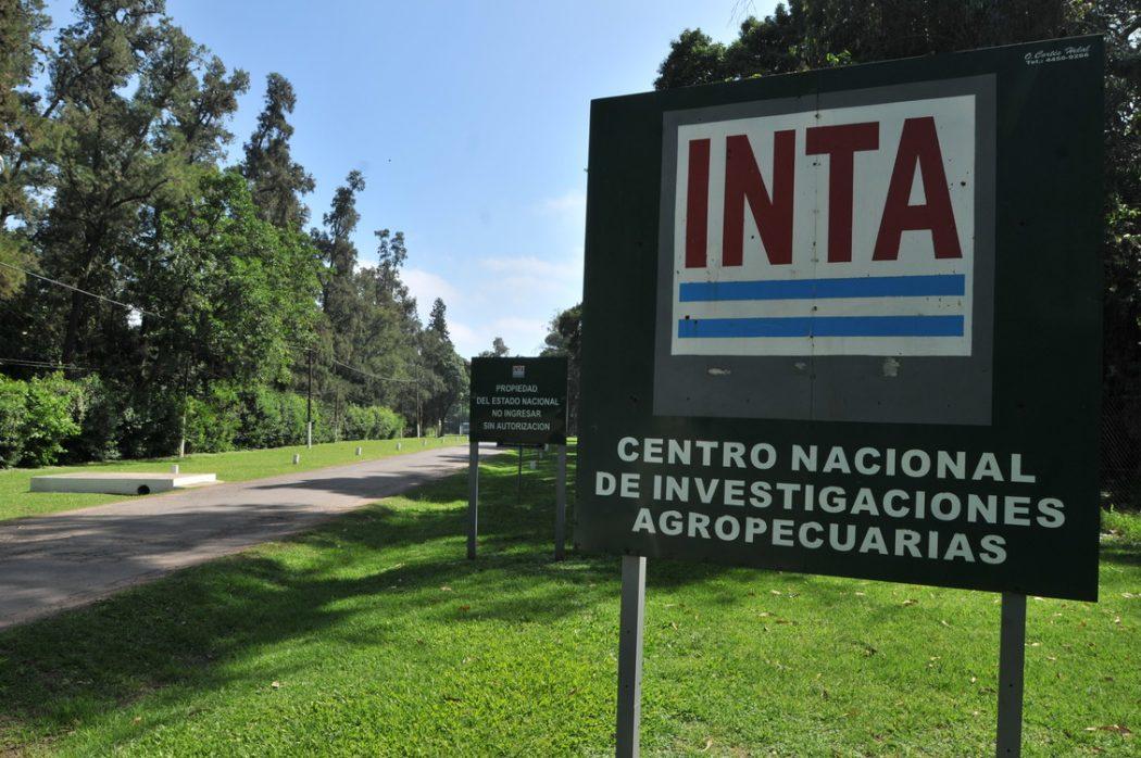 Investigadores de INTA descubren bactería que podría utilizarse para elaborar bioetanol celulósico