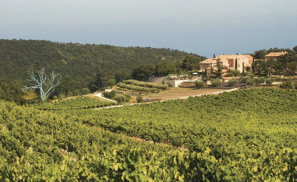 Chêne Bleu: la bodega que encontró en sus clientes financiamiento para hacer vinos más sustentables