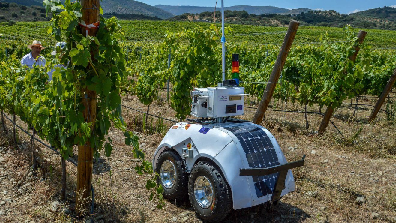 Bodegas apuestan por la tecnología para defenderse del cambio climático y la falta de mano de obra
