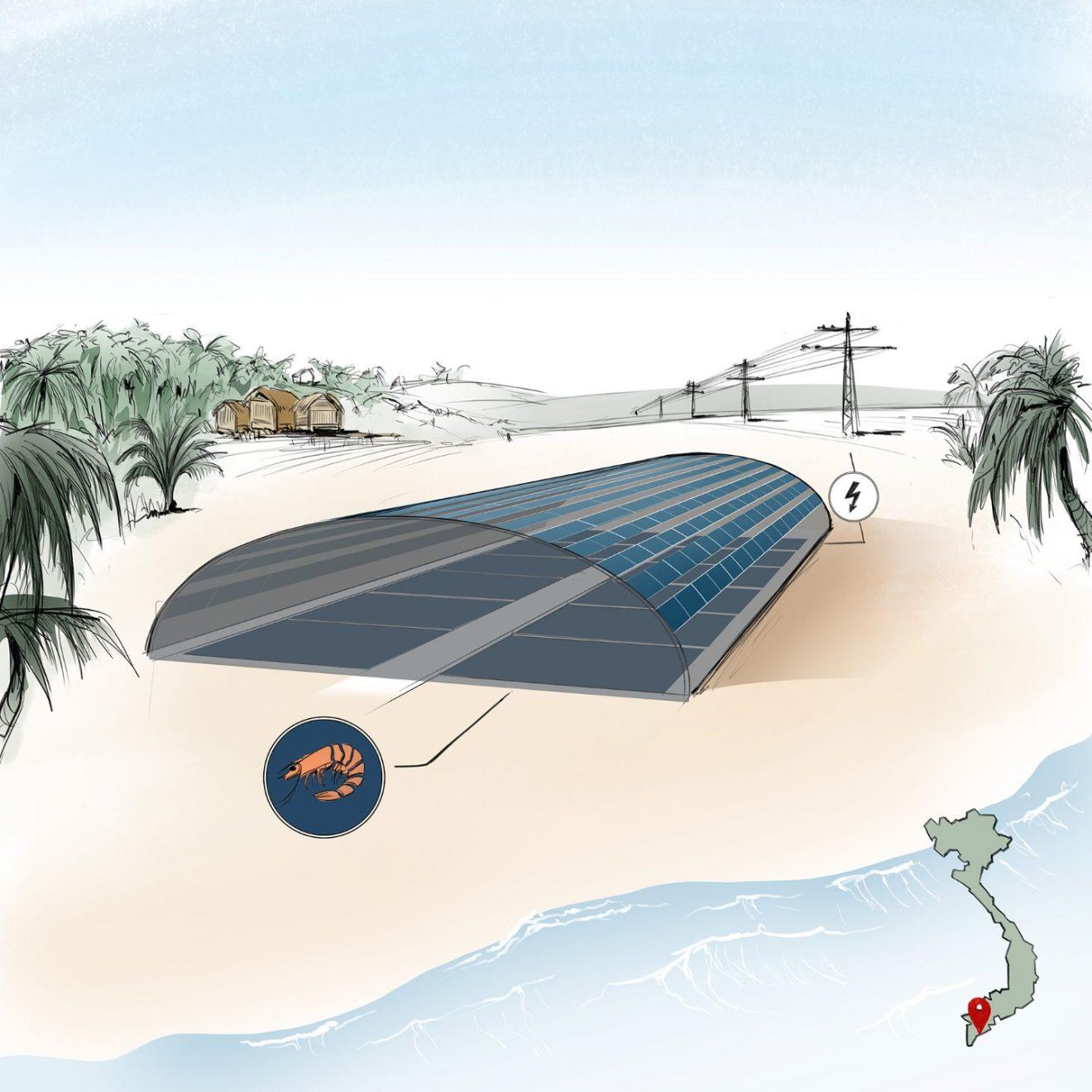 Aqua-PV, el novedoso proyecto que combina la cría de camarones con producción de energía renovable