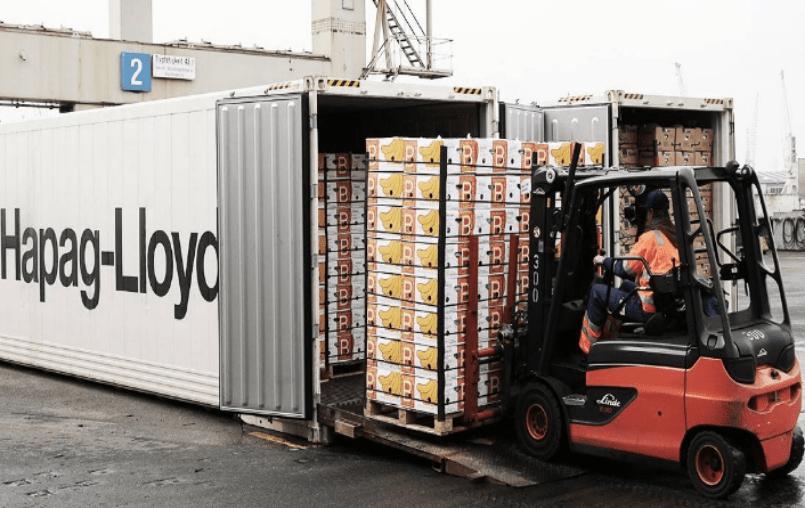 Exportar alimentos con valor, la gran oportunidad hacia 2030