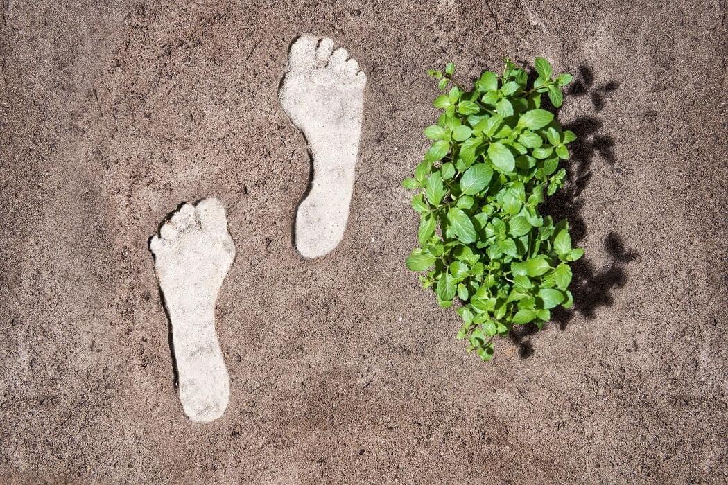 Nivea y Evonik apuestan al CO2 para producir cosméticos