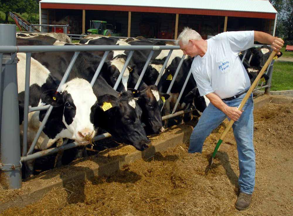 Los tambos de Nueva Jersey: un modelo para un sistema alimentario más resiliente