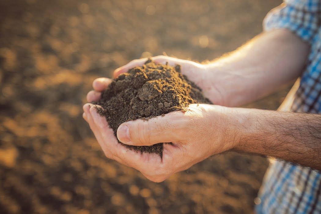 Bayer compensará con bonos de carbono a productores sustentables de EEUU y Brasil