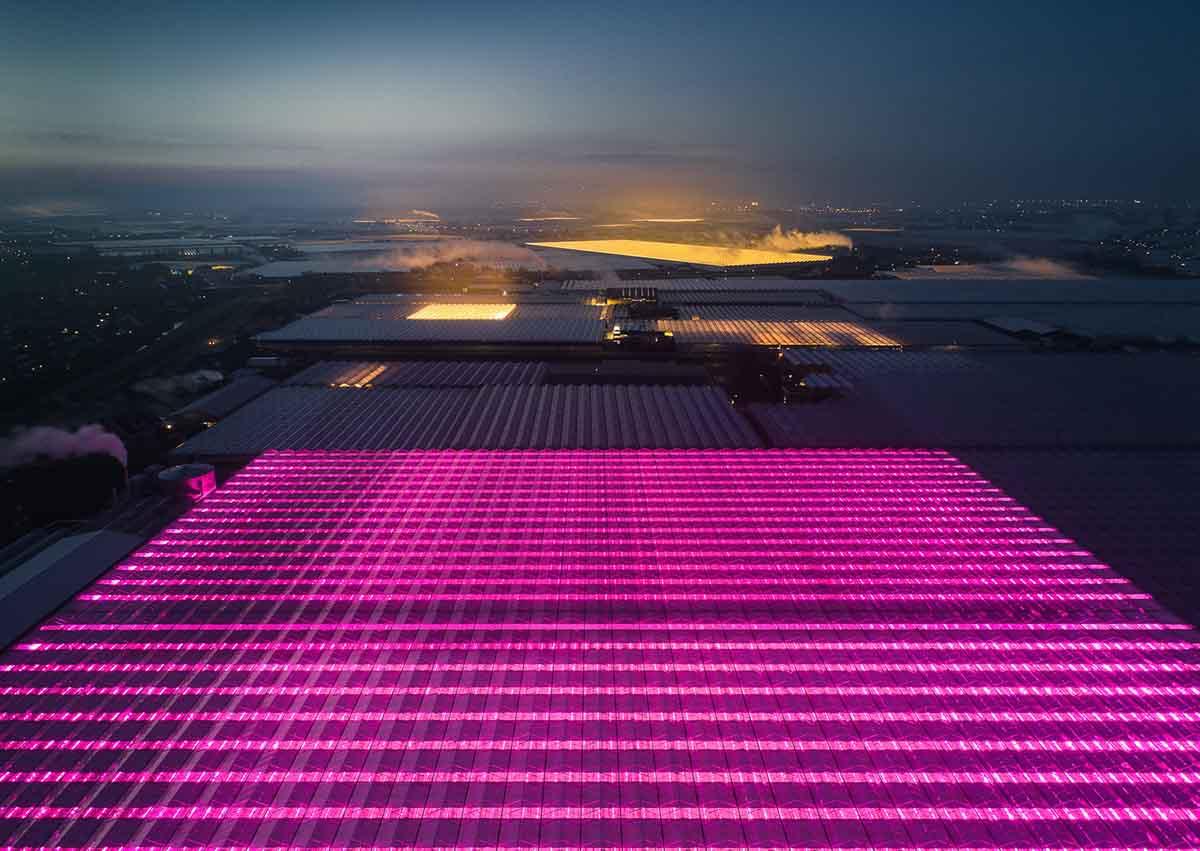 La arquitectura holandesa que alimenta el mundo