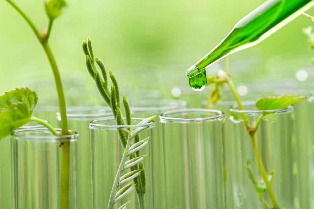 EEUU: legisladores bipartidistas presentaron un proyecto de Ley para impulsar la química verde