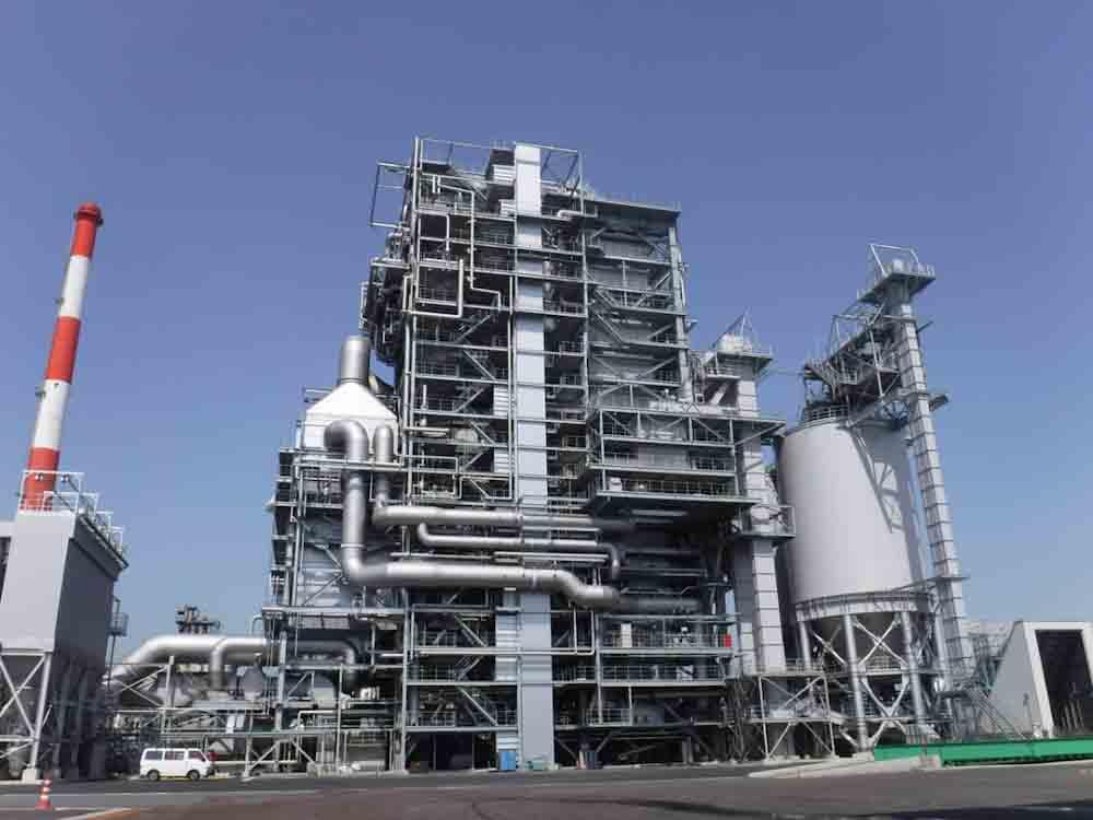Japón estudia nuevos mecanismos de precios para impulsar la generación eléctrica con biomasa