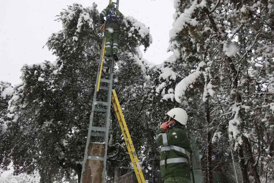 La energía de la biomasa ayuda a los españoles a soportar la ola de frío