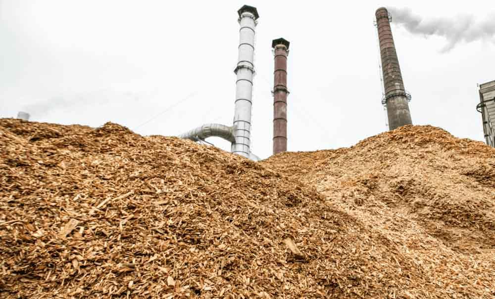 La Agencia Internacional de Energía reacciona ante las campañas que cuestionan el uso de biomasa leñosa