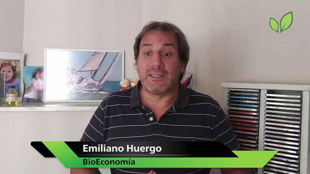 Alerta Biocombustibles