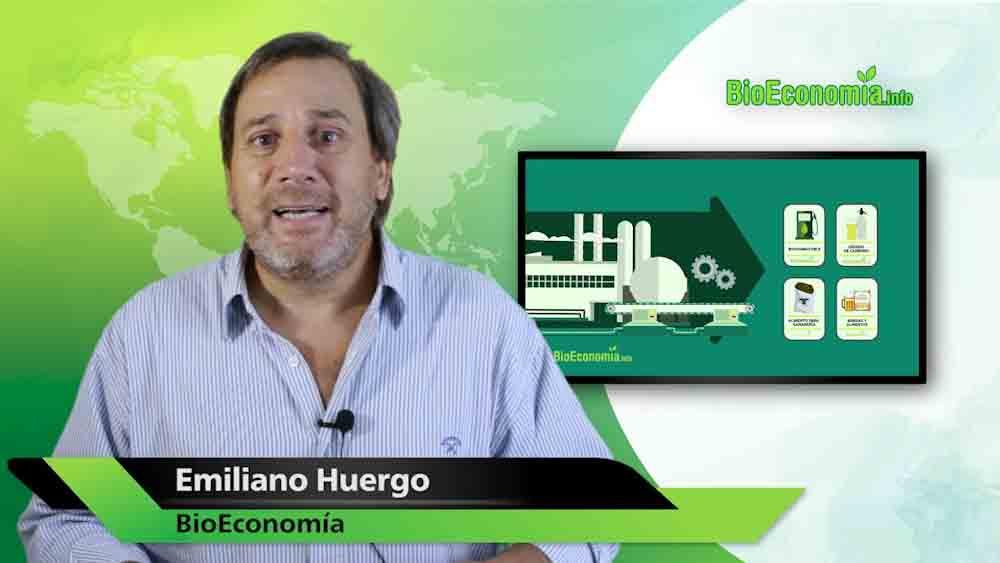 La bioeconomía del hidrógeno