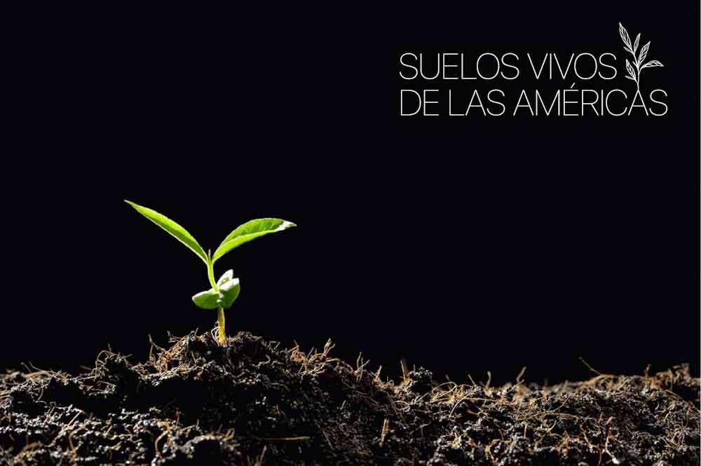 """Bayer Crop Science: primer socio estratégico de la iniciativa """"Suelos Vivos de las Américas"""""""
