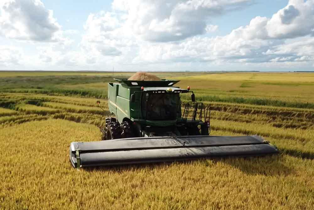 Lanzaron revolucionario cabezal de cosecha ultraliviano que reduce hasta 50% el consumo de combustible