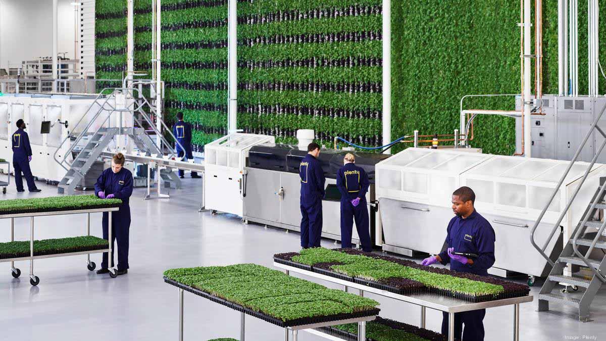 Inclusión, sostenibilidad, productividad y seguridad alimentaria confluyen en una granja vertical en Los Angeles