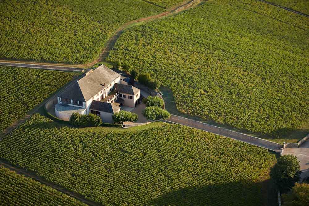 El cambio climático obliga a las bodegas de Borgoña a replantearse los varietales