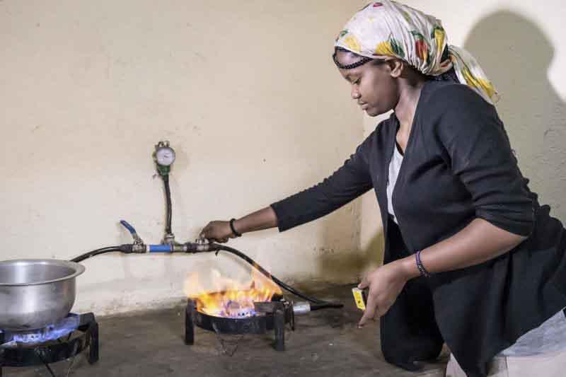 FAO impulsa el biogás en el corredor ganadero de Uganda para poner fin a la deforestación