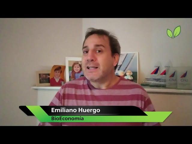 Havanna, Bioceres y la huella de carbono de los alfajores