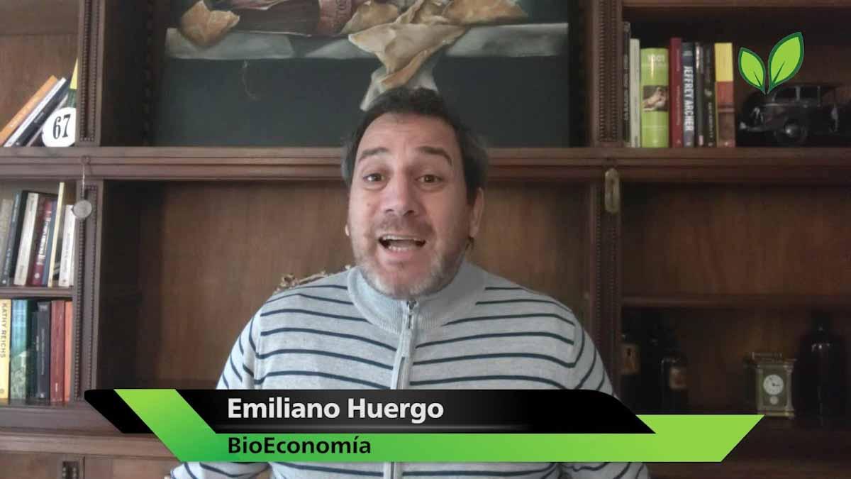 Los biocombustibles se encienden en el mundo y se apagan en la Argentina