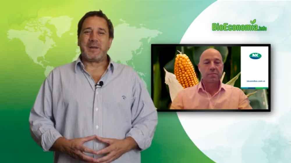 Tecnologías, sustentabilidad y perspectivas para una nueva campaña de maíz con Paco Perez Brea