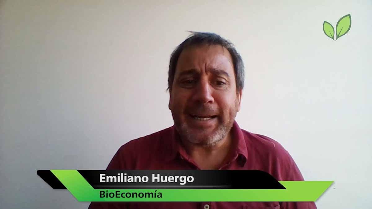 El precio de la contaminación y la hoja de ruta energética de Brasil