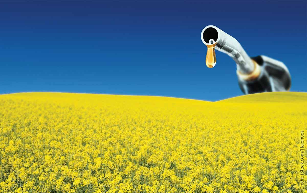 Canadá crea un fondo de U$S 1.200 MM para ampliar la producción de biocombustibles