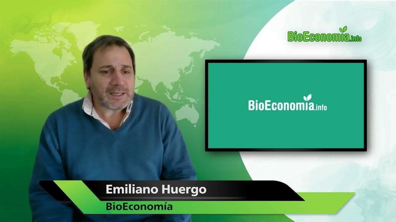 Una reflexión sobre el aporte de las bioenergías