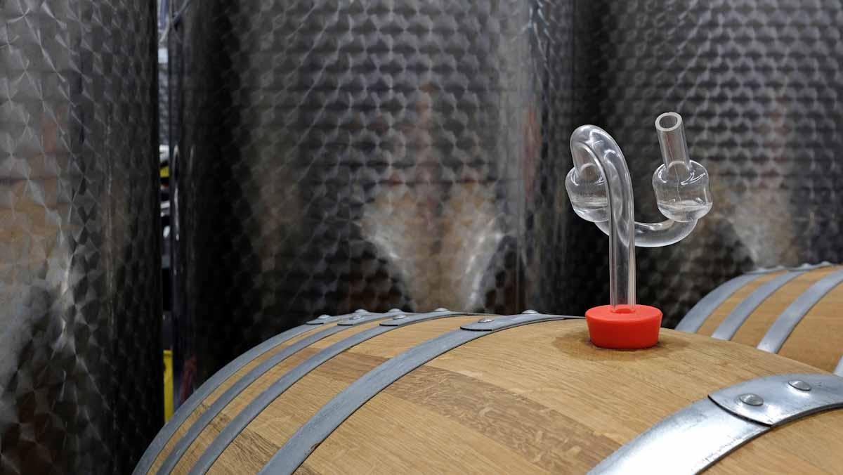 Pocas industrias son testigos del cambio climático más de cerca que el mundo del vino.