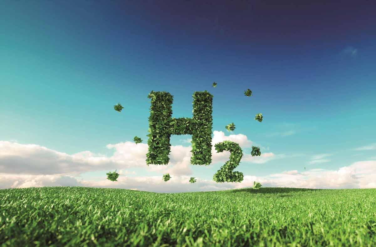 Gobierno de EEUU financia dos proyectos de conversión de biomasa en hidrógeno verde