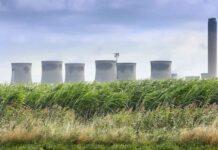 Agricultores del Reino Unido y el mayor productor de energía a partir de biomasa trabajan juntos para impulsar los cultivos energéticos