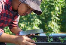 Blockchain: Incorporar a los pequeños y medianos productores a las nuevas tecnologías es fundamental para cerrar brechas en la producción agrícola