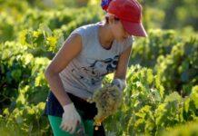 Agricultoras historias de esfuerzo y lucha contra la desigualdad de derechos en el Día Internacional de las Mujeres Rurales